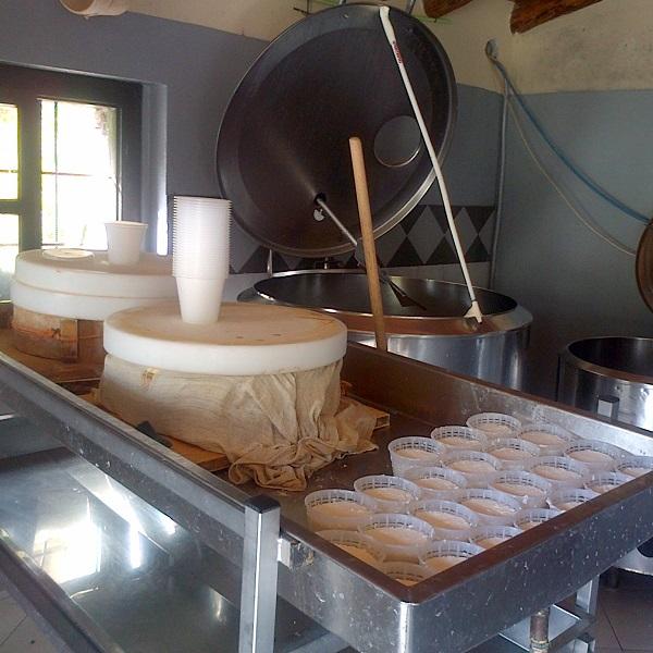 caseificio caseifici montagna produzione prodotto prodotti ricotta formagella formaggella