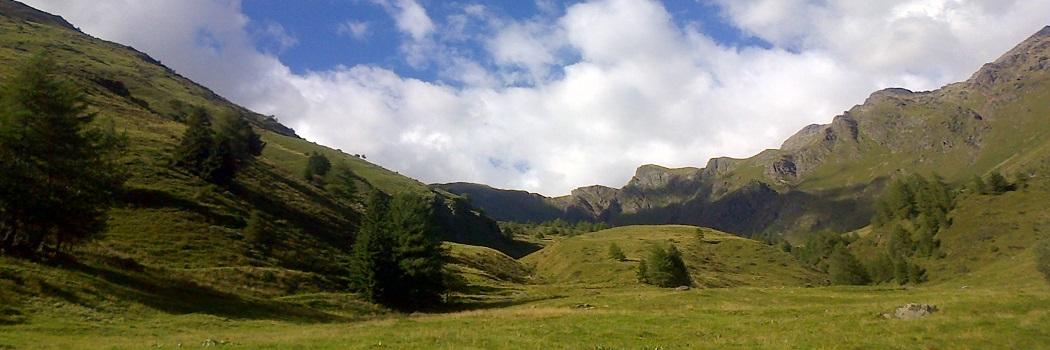 prealpi alpi montagna paesaggio filiera produtti produzioni agroalimentare alimentari montagna