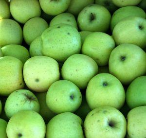 mela verde mele verdi montagna