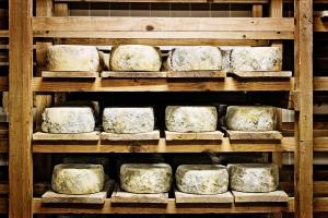 formaggio formaggi formagella formaggella stagionata stagionate montagna